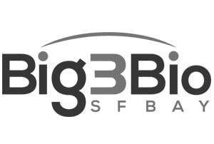 big 3 bio grey logo